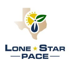 LSP_Logo_Stacked_Color.png