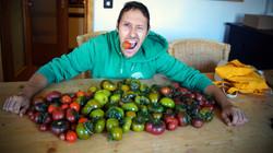 20190902 Tomaten