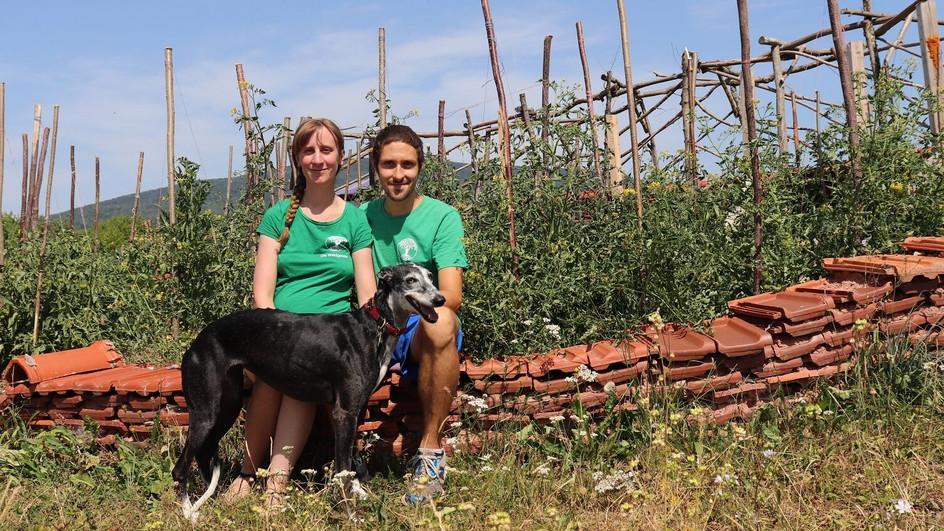 Permakultur ist nicht nur Gartenarbeit