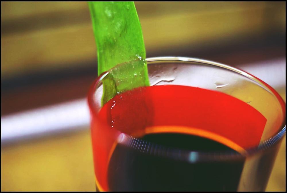 Aloe Vera Fruchtfleisch gewinnen