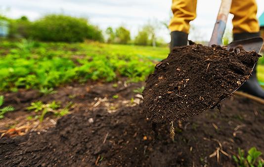 Soil_Mulch_Shovel_PNGWEB.png