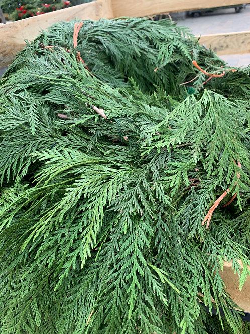 Western Red Cedar Roping