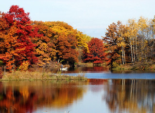 FALL BOATING SEASON TIPS FOR AN AWESOME AUTUMN RIDE