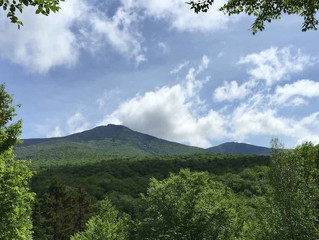 ROAD TRIPS IN THE NORTHEAST: SUMMER ROAD TRIP SERIES