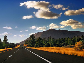 4 ROAD TRIP MOVIES WITH VALUABLE CAR LESSONS