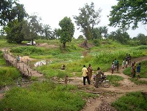 Benin River & Work.jpg
