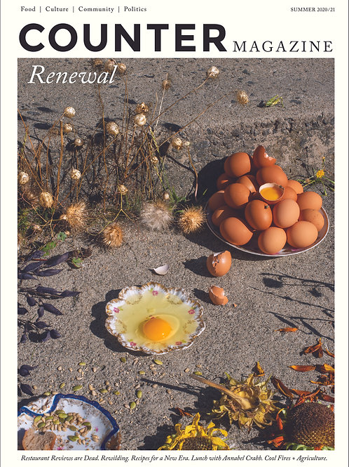 T_Issue #2 Renewal