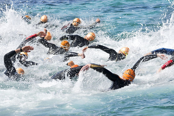 triathlon competitors in swim portion of