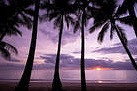 stock-photo-sun-rising-above-the-ocean-with-palm-trees-in-foreground-130509944_edited.jpg