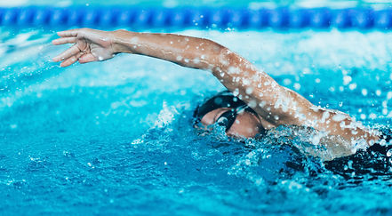 Front crawl swimmer in the pool.jpg