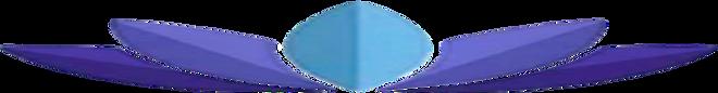 Blue.lotus.logo.super.stretch.opaque.png