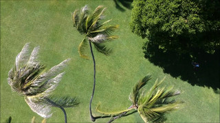 Our Drones Eye View