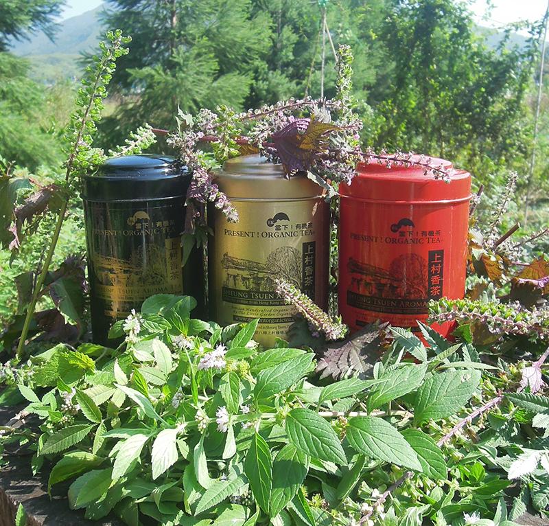 Sheung Tsuen Aroma Tea Selection