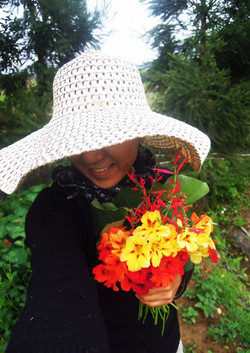 Harvest edible flowers in small farm