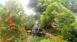 Tea time in the little garden