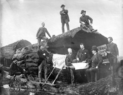 Harry T. Devine, Real Estate Office in Big Tree, 1886