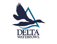 delta-waterfowl.jpg