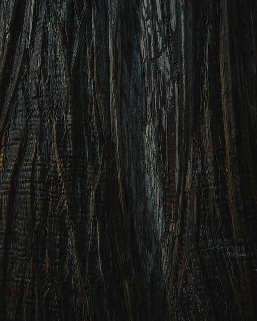 UNSPL fd textile noir.jpg
