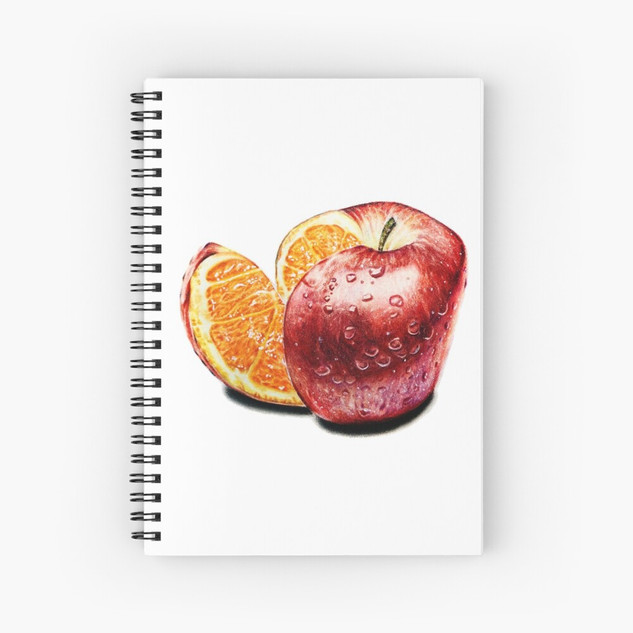 """Freakonomics"" Notebooks"