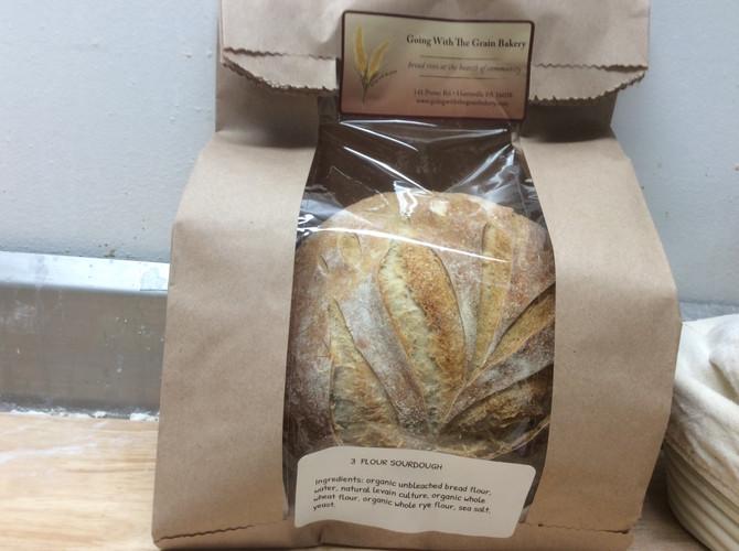 talkin' sourdough: taste testing 3 Flour Sourdough (aka The Sour One)