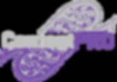 Content Pro Logo.png