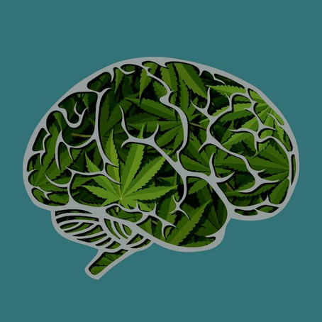 The Pros and Cons of Cannabis and Mental Health