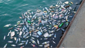 SHIPPING COMPANIES AGAINST THE USE OF PLASTICS