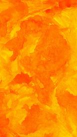 orange wc.png