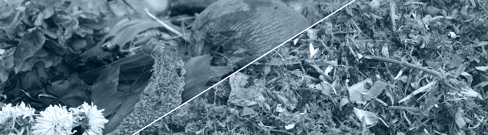 Organic-waste-banner.png