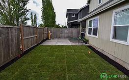backyard2_edited.jpg