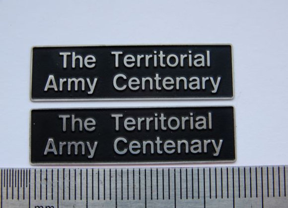 60040 The Territorial Army Centenary