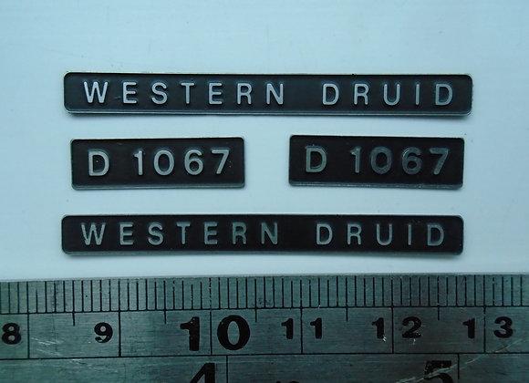 D1067 WESTERN DRUID