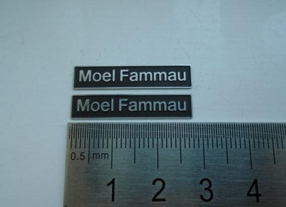 60008 Moel Fammau with double arrows