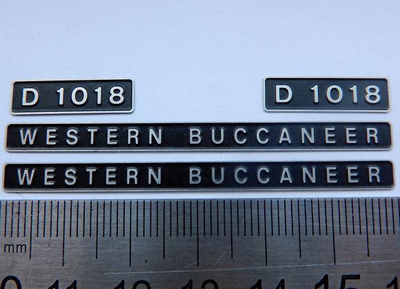 D1018 WESTERN BUCCANEER