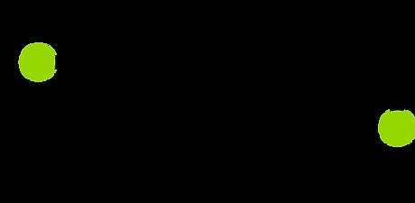 EVIN_logo.png
