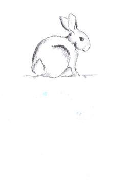 My bunny sketch!