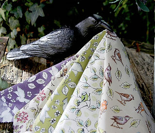garden%20birds%20(4)_edited.jpg