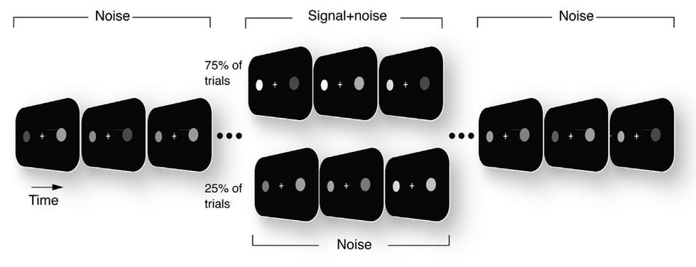 Modeling perceptual decision making