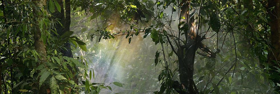 LUXframe světelný obraz 156 x 100cm