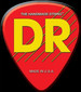 DR Logo_edited.jpg