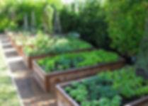 potager-en-carré-permaculture-jardiniere
