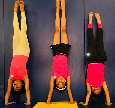 Aerial Zone Gymnastics