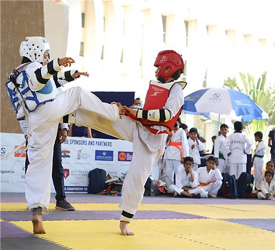Taekwondo Plus Beginner Program