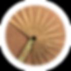 _0009_IMG_E2281-(1175x1440).jpg.png