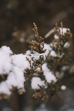 snow engagement ring photo, winter engagement ring, snow engagement ring, lincoln il engagement phot