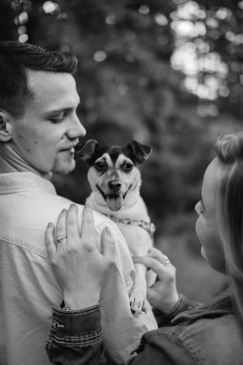 springfield, il, illinois, downtown, springfield engagement photographer, couples photographer, springfield il wedding photographer, springfield il wedding photography, springfield il engagement photographer, couple, engaged, central illinois, sherman, il chatham, rochestor, lifestyle, affordable, cheap, christian, believer, lincoln memorial gardens, springfield park, dog