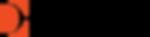 dynaveil_logo.png