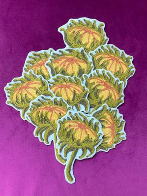 Sunflower Buds