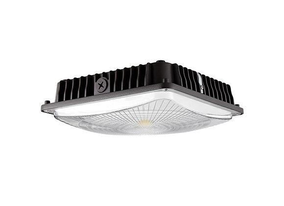LED Canopy Light 120V