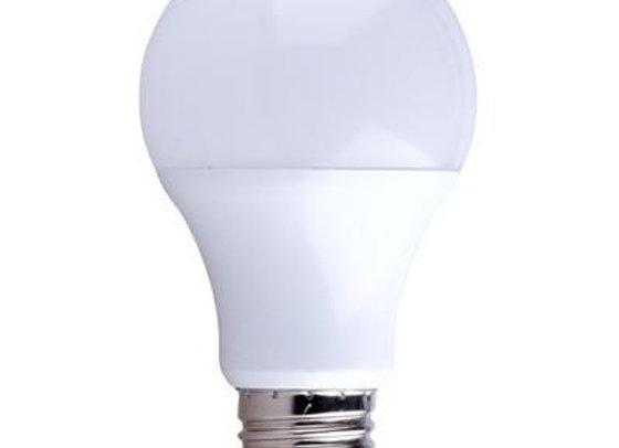 LED A-Shape Bulb 120V